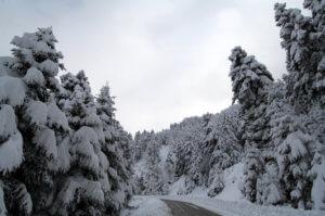 Καιρός – Ωκεανίς: Εγκλωβισμένοι στα χιόνια – Σε εξέλιξη η επιχείρηση διάσωσης στην Κεφαλονιά!