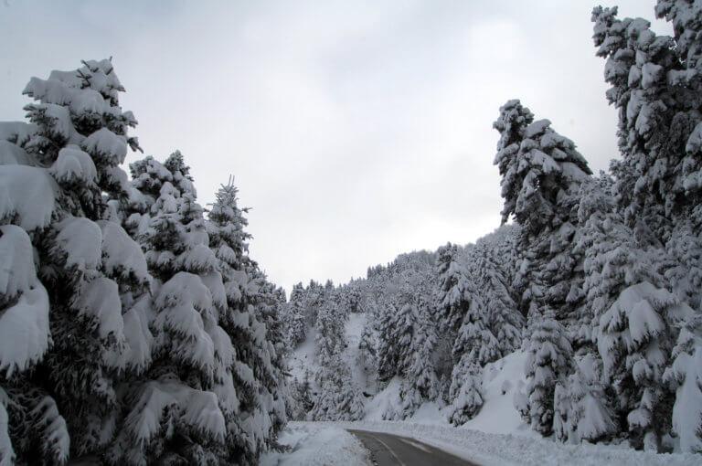 Καιρός – Ωκεανίς: Εγκλωβισμένοι στα χιόνια – Σε εξέλιξη η επιχείρηση διάσωσης στην Κεφαλονιά! | Newsit.gr