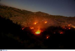 Μυτιλήνη: Φωτιά έκανε στάχτη 100 στρέμματα δάσους – Διαπιστώθηκε ο τρόπος που προκλήθηκε [pics]