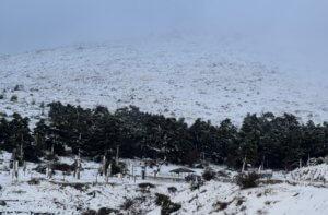 Καιρός: Βροχές, καταιγίδες και χιόνια – Στα λευκά η Πάρνηθα!