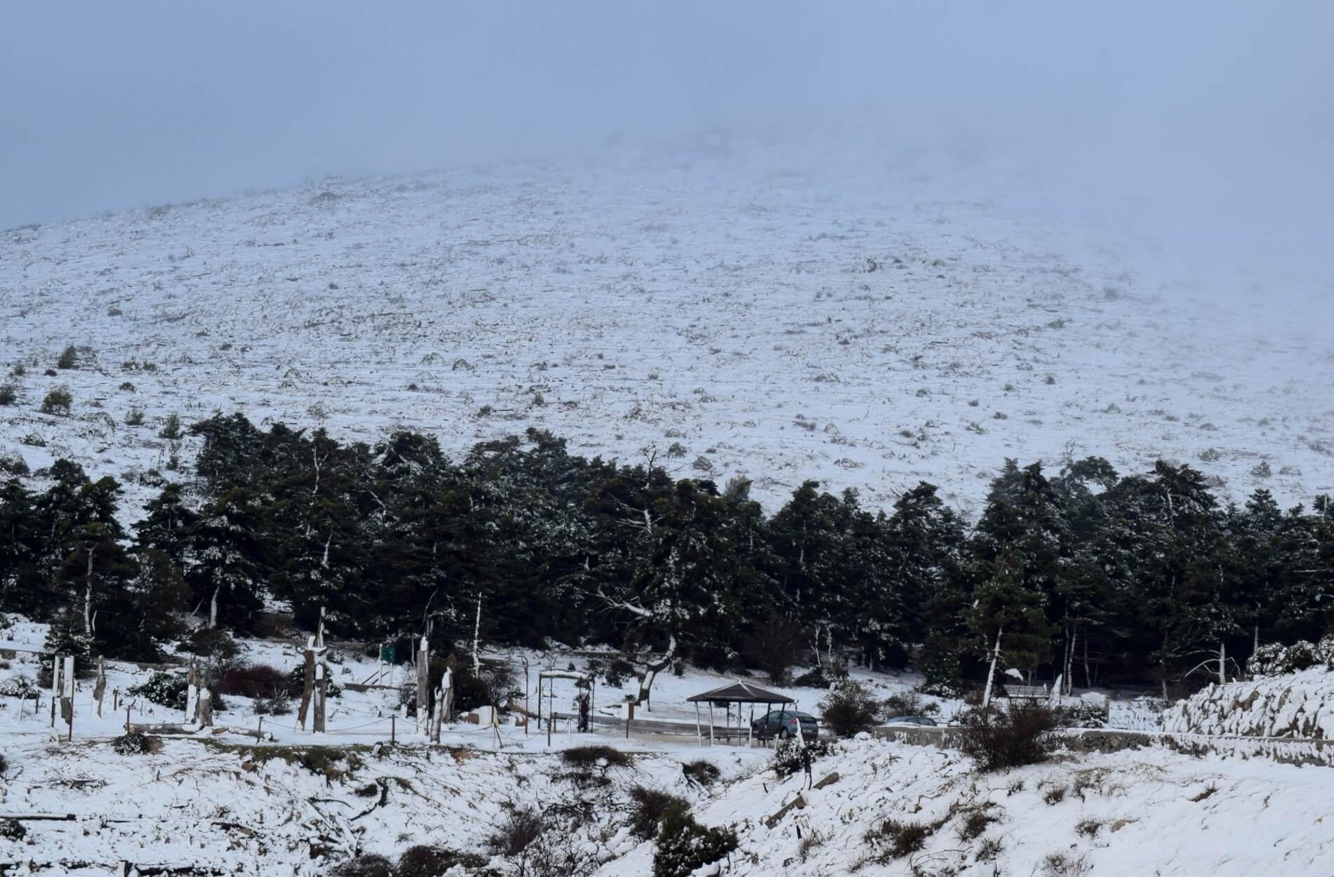 """Καιρός: """"Βούλιαξε"""" στο χιόνι η Πάρνηθα! Διακοπή της κυκλοφορίας - Εντυπωσιακές εικόνες από το Μπάφι - Χιόνια και στα βόρεια προάστια"""