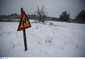 Χιονίζει στα ορεινά των Τρικάλων – video