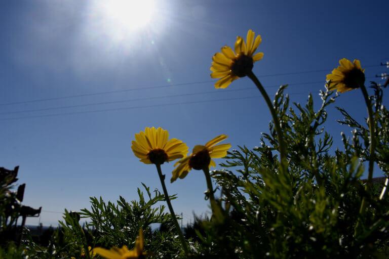 Καιρός: Ανεβαίνει και άλλο η θερμοκρασία την Πέμπτη