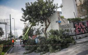 Καιρός: «Διαλύουν» τα πάντα οι δυνατοί άνεμοι στην Αττική