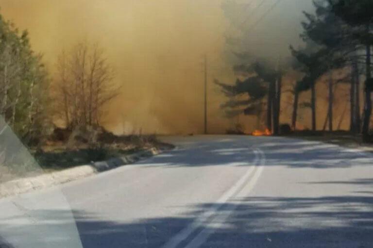 Μεγάλη φωτιά κοντά στην Ελάτη Τρικάλων [pics]