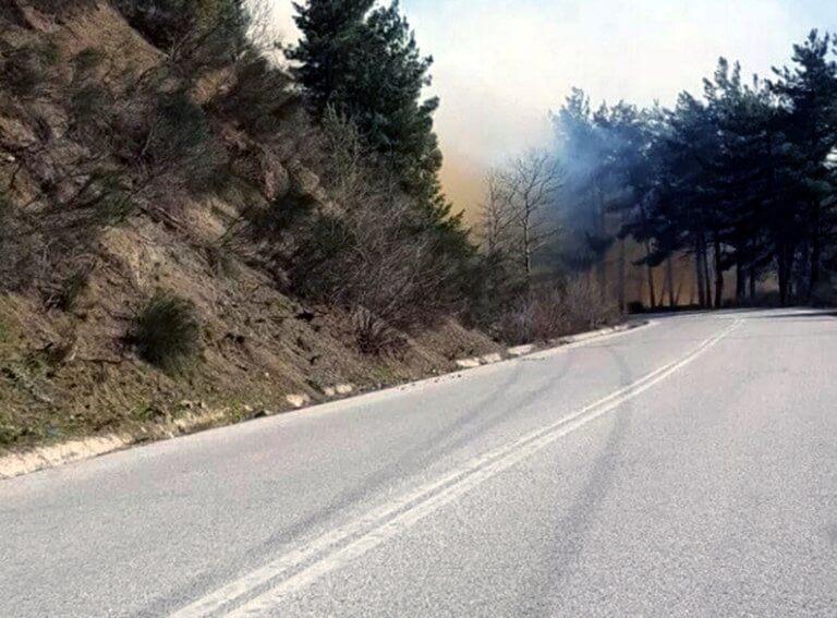Τρίκαλα: Έπιασαν ηλικιωμένη για τη μεγάλη φωτιά | Newsit.gr