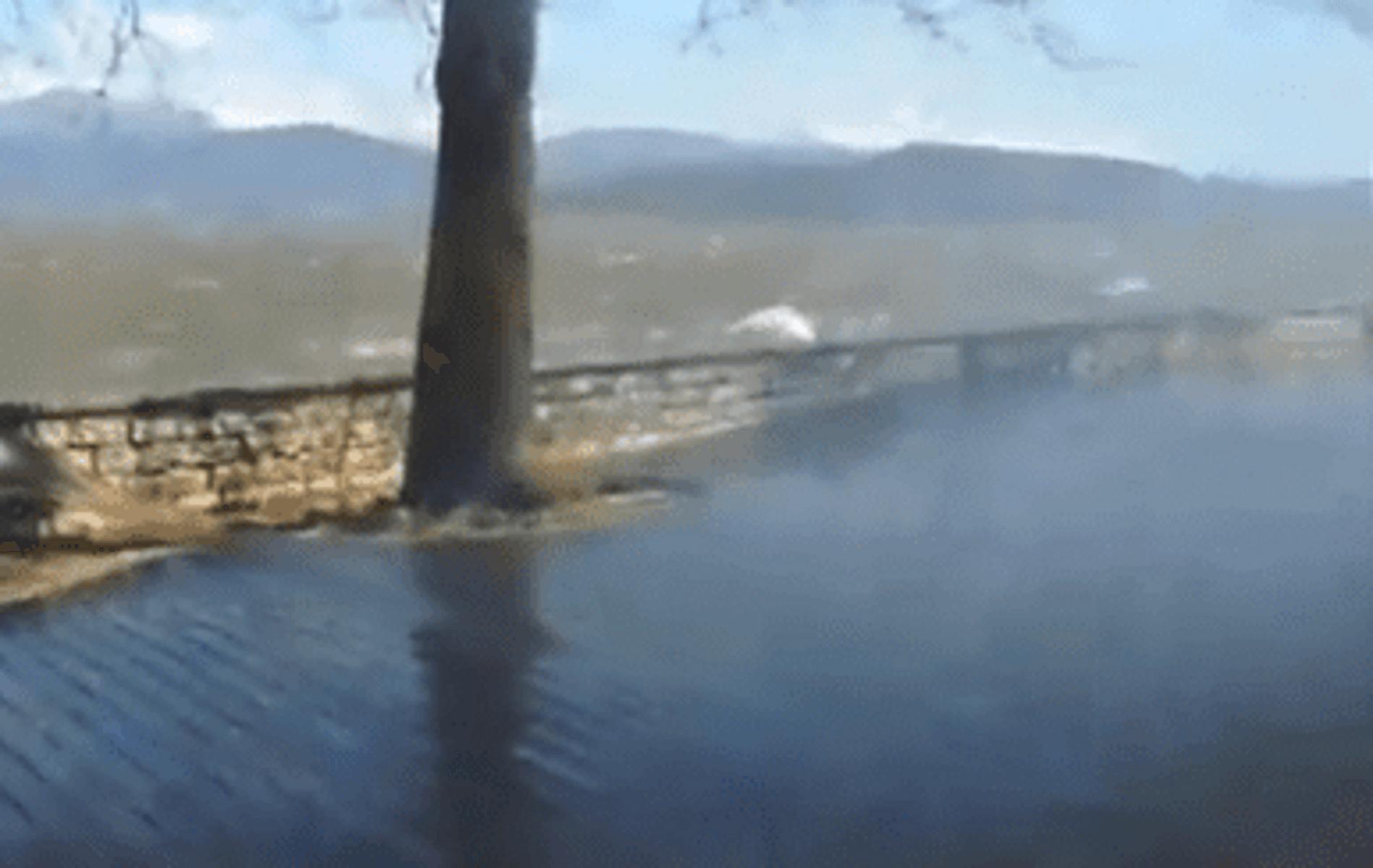 Έπιασε… φουρτούνα στη λίμνη των Ιωαννίνων – video