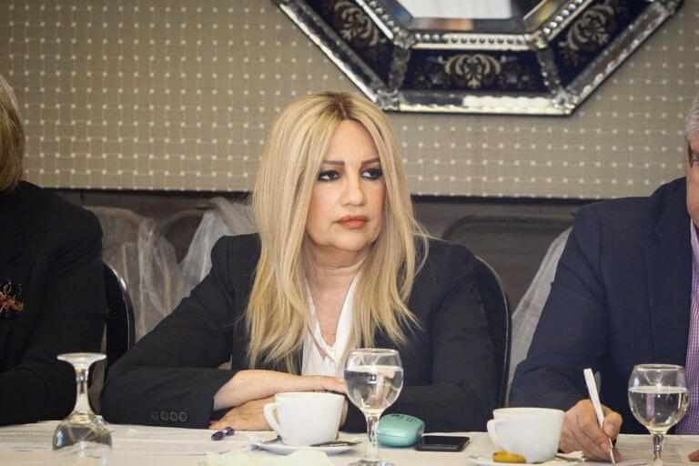 Γεννηματά από το Μάτι: Η κ. Δούρου οφείλει να παραιτηθεί | Newsit.gr