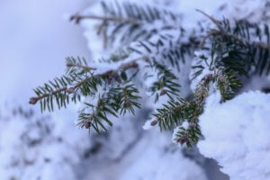Καιρός αύριο: Χειμώνας ξανά – Βροχές, θυελλώδεις άνεμοι και χιόνια!