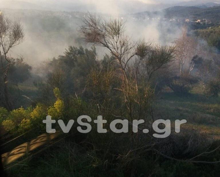 Εύβοια: Η φωτιά τον έστειλε στο νοσοκομείο με εγκαύματα – Η απόφαση του εισαγγελέα!