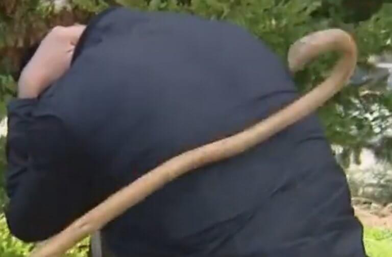 Κρήτη: Ανατροπή δεδομένων για τον τραυματισμό Αμερικανού στρατιώτη με μαγκούρες – Τι έδειξαν οι κάμερες – video | Newsit.gr