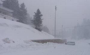 Ο χειμώνας είναι εδώ! Χιονίζει στον Παρνασσό! – video