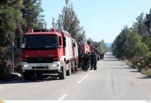 Ιεράπετρα: Σε εξέλιξη φωτιά στα Αχλιά – Ισχυροί άνεμοι δυσκολεύουν τους πυροσβέστες!