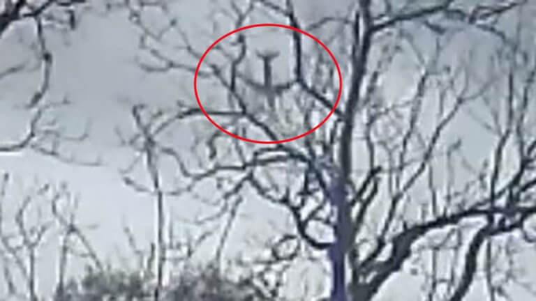 Βίντεο σοκ: Η «βουτιά» αεροπλάνου λίγο πριν από τη συντριβή στο Τέξας | Newsit.gr