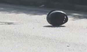 Θεσσαλονίκη: Αποκεφαλίστηκε οδηγός μηχανής σε φρικτό τροχαίο – Εικόνες σοκ στην περιφερειακή – video