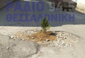 Θεσσαλονίκη: Φύτεψε… δέντρο σε λακκούβα στη μέση του δρόμου! [pics]