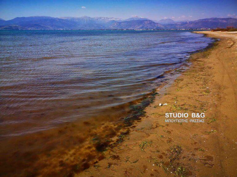 Ναύπλιο: Η ερυθρά παλίρροια κοκκίνισε τη θάλασσα – Αλαγή σκηνικού μέσα σε λίγη μόνο ώρα!