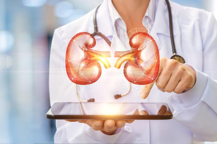 Νεφροί: 7 συνήθειες που προστατεύουν την υγεία τους