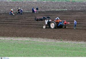 """Ροδόπη: Υποσχέσεις Σκρέκα στους αγρότες – """"Μείωση του κόστους παραγωγής και ενίσχυση της ανταγωνιστικότητας""""!"""