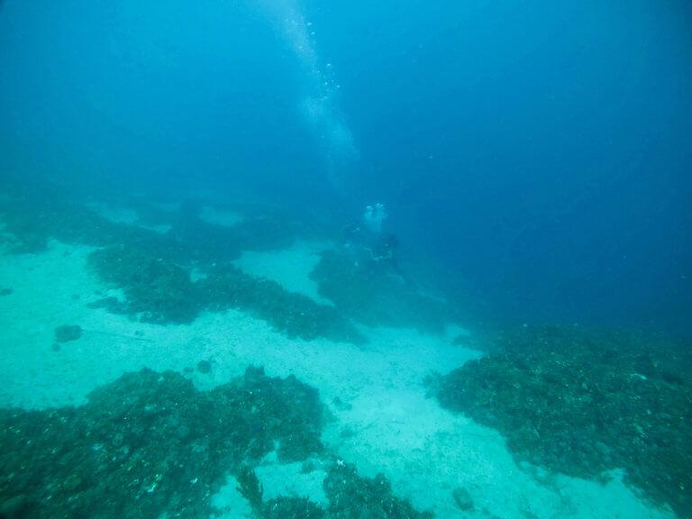 Θαλάσσιος αρχαιολογικός χώρος στην Αλόννησο!