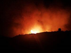 Οικολογική καταστροφή στο δάσος της Στροφυλιάς – Στάχτη πάνω από 2.000 στρέμματα!