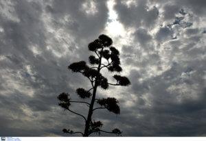 Καιρός σήμερα: Μποφόρ και τοπικές βροχές – Που θα χρειαστούμε ομπρέλα