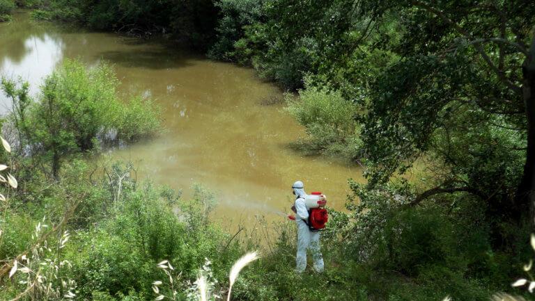 Αρχίζει το πρόγραμμα καταπολέμησης κουνουπιών στην Κεντρική Μακεδονία