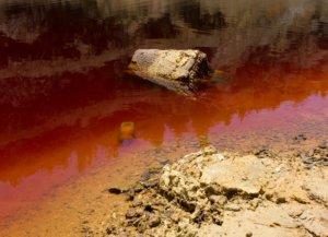 Ορέστης: «Μυρίζει θάνατο» έλεγε αμερικανίδα blogger για την λίμνη με τα πτώματα! video
