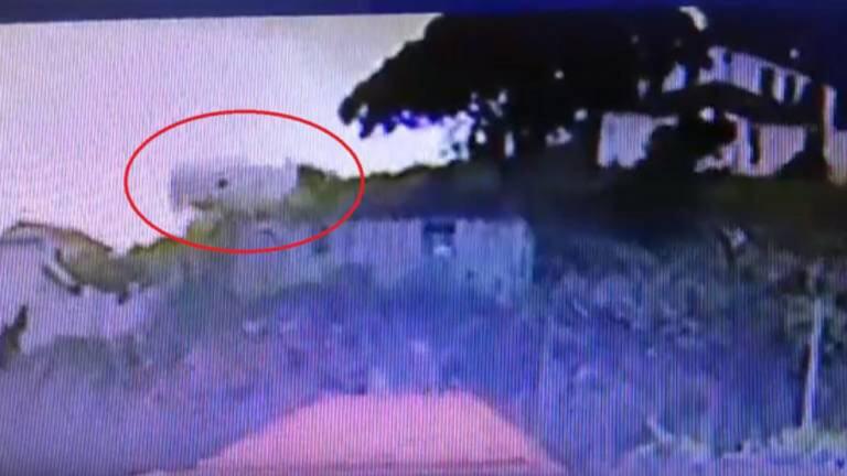 Πορτογαλία: Βίντεο σοκ – Η στιγμή της πτώσης του λεωφορείου σε χαράδρα