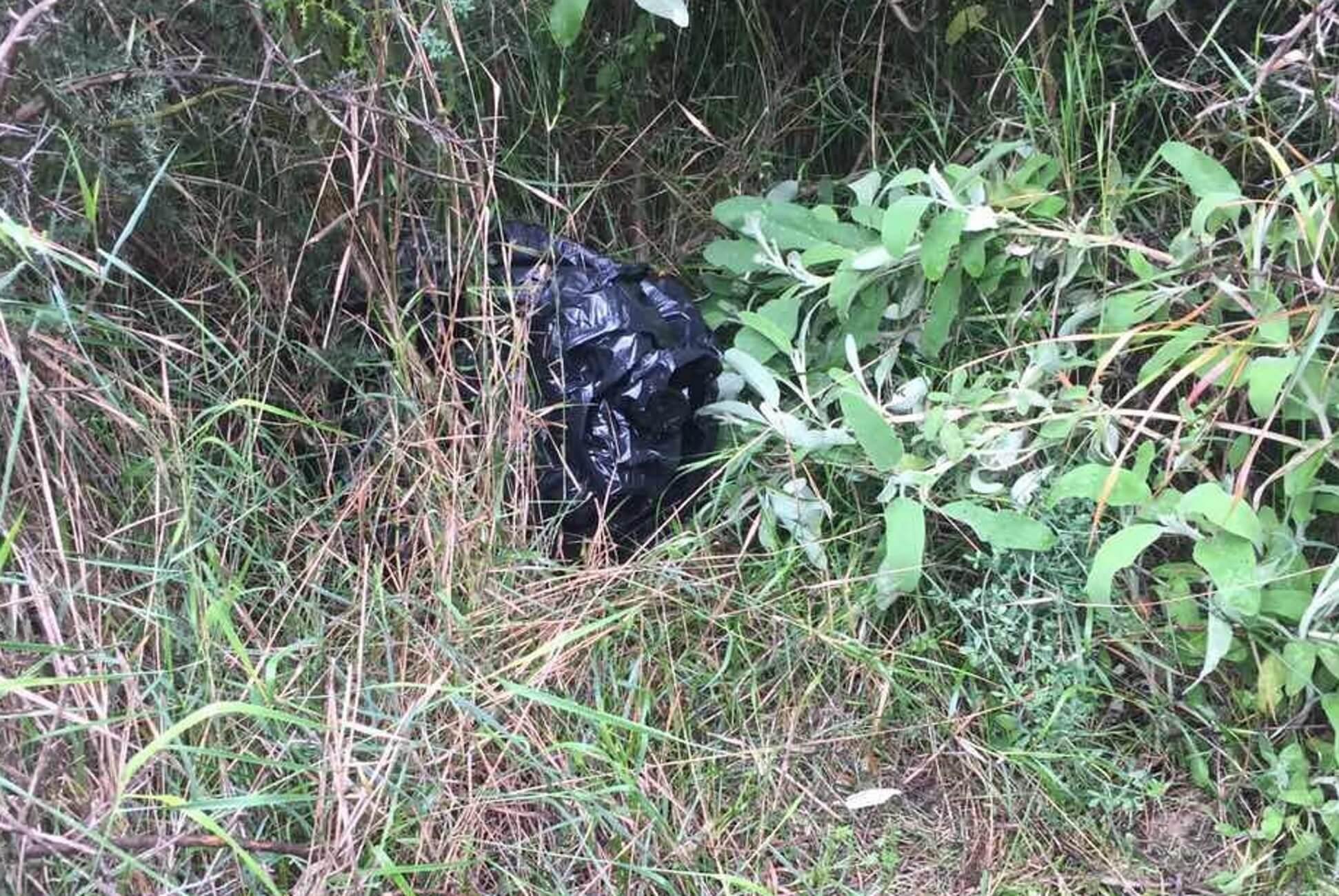 Πάτρα: Η πεταμένη σακούλα έκρυβε τα πειστήρια της ενοχής του – Οι διαπιστώσεις των αστυνομικών [pics]