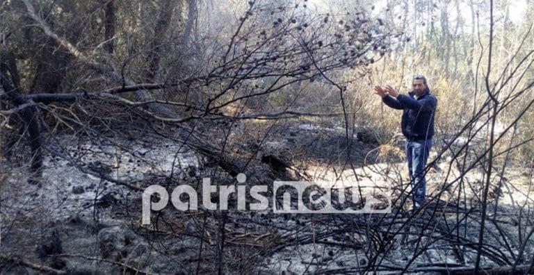 Από εδώ ξεκίνησε η φωτιά στο δάσος της Στροφυλιάς [pics]