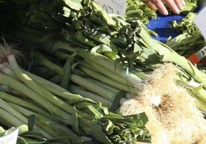 Κατερίνη: Νέα σύλληψη γιαγιάς σε λαϊκή αγορά – Πουλούσε χόρτα χωρίς άδεια – video