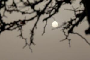 Καιρός: Αφρικανική σκόνη με ζέστη και τοπικές βροχές