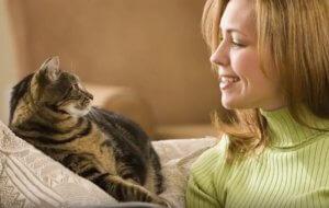 """Τι άλλο θα ακούσουμε; Ένας """"παιδότοπος"""" για γάτες!"""
