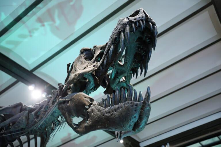 """Ένας δεινόσαυρος """"αναστατώνει"""" την κροατική πρωτεύουσα!"""