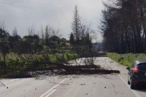 Καιρός: Σοβαρές ζημιές στο Ηράκλειο