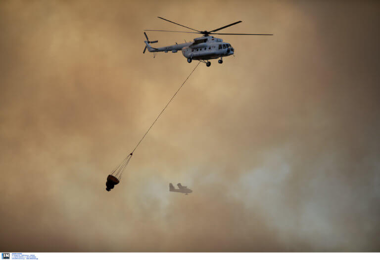Αργολίδα: Σε εξέλιξη φωτιά στο Άργος – Επί τόπου ισχυρές δυνάμεις της Πυροσβεστικής!