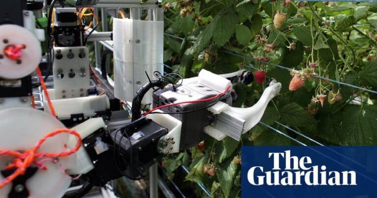 Ιδού το πρώτο ρομπότ που μαζεύει σμέουρα – video