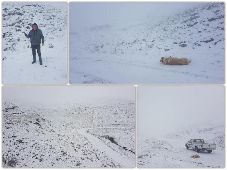 Γιάννενα: Επιστροφή στον χειμώνα με χιόνια – Ο καιρός «τρελάθηκε» στο κατάλευκο Συρράκο [pics]