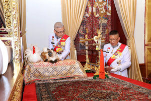 Ταϊλάνδη: Χαμός με τον… γάτο του Βασιλιά! Ήταν ψεύτικος;