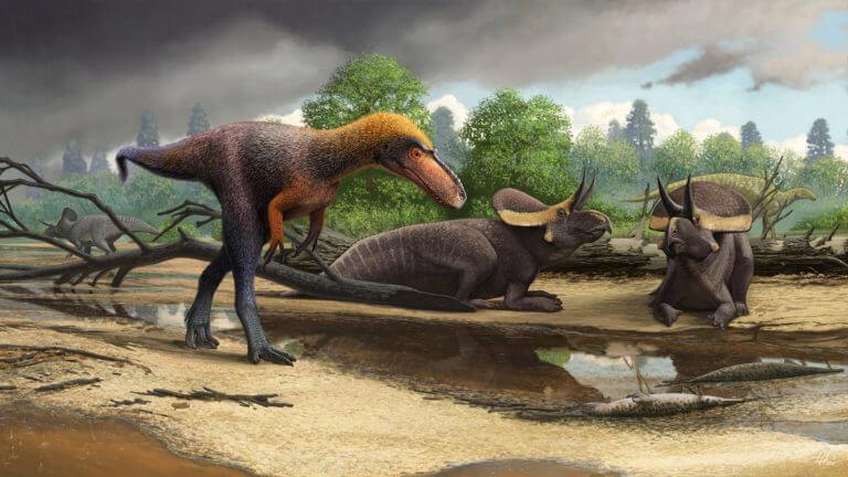 Ο «παππούς» του T-Rex! Ανακαλύφθηκε άγνωστος πρόγονος του Τυραννόσαυρου – video