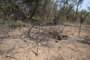 Μεξικό: 222 ομαδικοί τάφοι με 337 πτώματα έχουν βρεθεί από την 1η Δεκεμβρίου