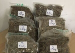 Ρόδος: Στη φυλακή για τα 3 κιλά κάνναβης