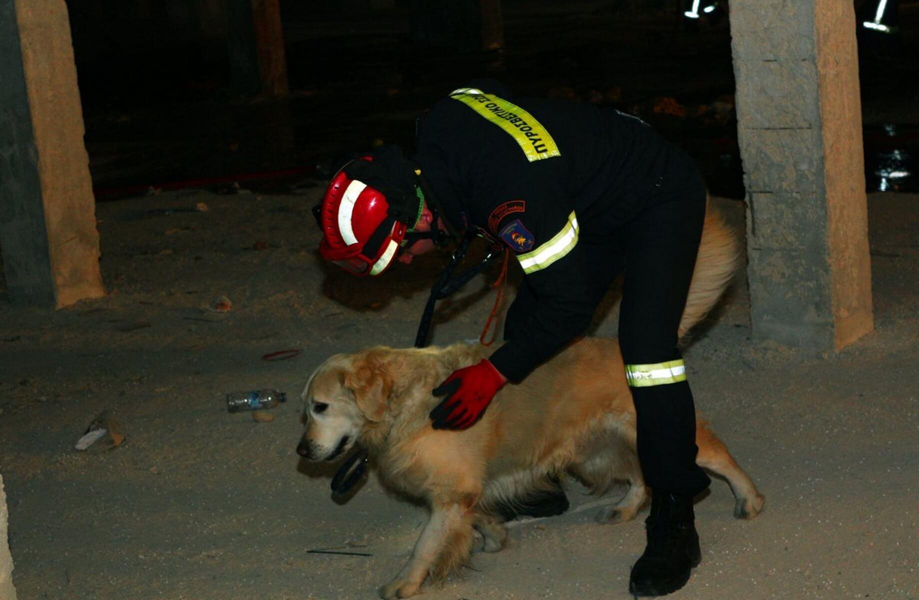 Ο σκύλος της 7ης ΕΜΑΚ έσωσε ηλικιωμένο που είχε εξαφανιστεί και η ζωή του ήταν σε κίνδυνο