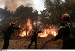 Φωτιά στις Πλαταιές Βοιωτίας – Ισχυροί άνεμοι πνέουν στην περιοχή