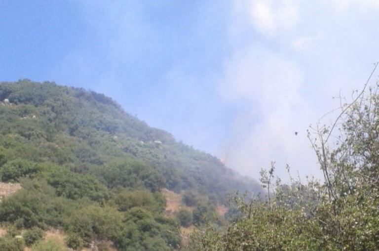 Φωτιά στα Καλάβρυτα: «Δεν απειλούνται σπίτια»