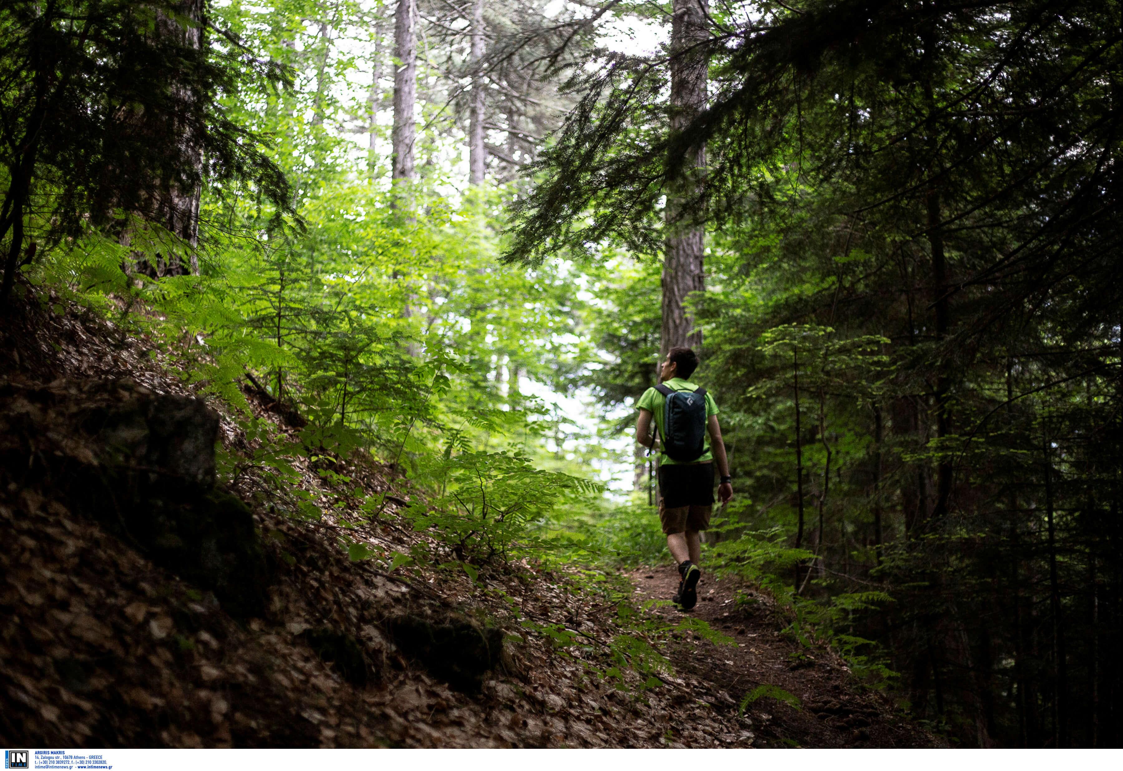 Όλυμπος: Κορυφώνεται το θρίλερ με τον αγνοούμενο ορειβάτη – Λιώνει από αγωνία η γυναίκα του