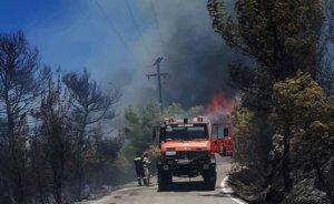 Πυρκαγιά στο Ριόλο Αχαΐας – Ενισχύονται οι δυνάμεις της Πυροσβεστικής