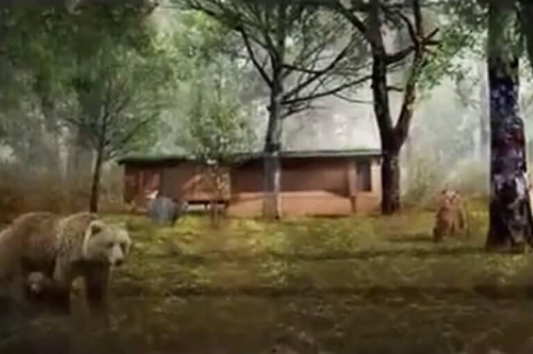 Αρκούδα κρατούσε άνδρα για έναν μήνα στη φωλιά της! Video