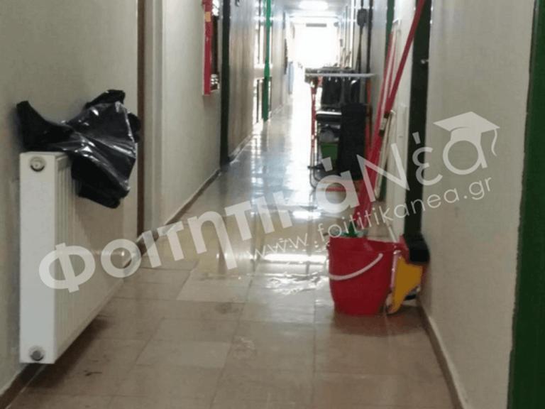Φοιτητές του ΑΠΘ: Οι ακαθαρσίες βγήκαν στα δωμάτια!